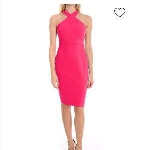 Likely Carolyn Dress in Fuschia NWT